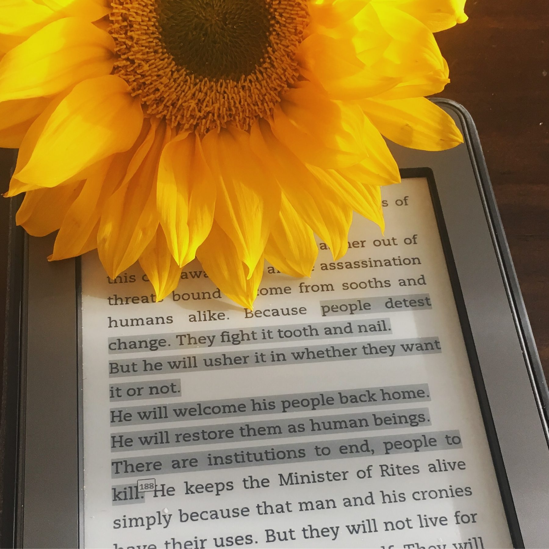 Highlighted section of text (Descendant of the Crane by Joan He) on a black kindle. A sunflower sits on top of the kindle