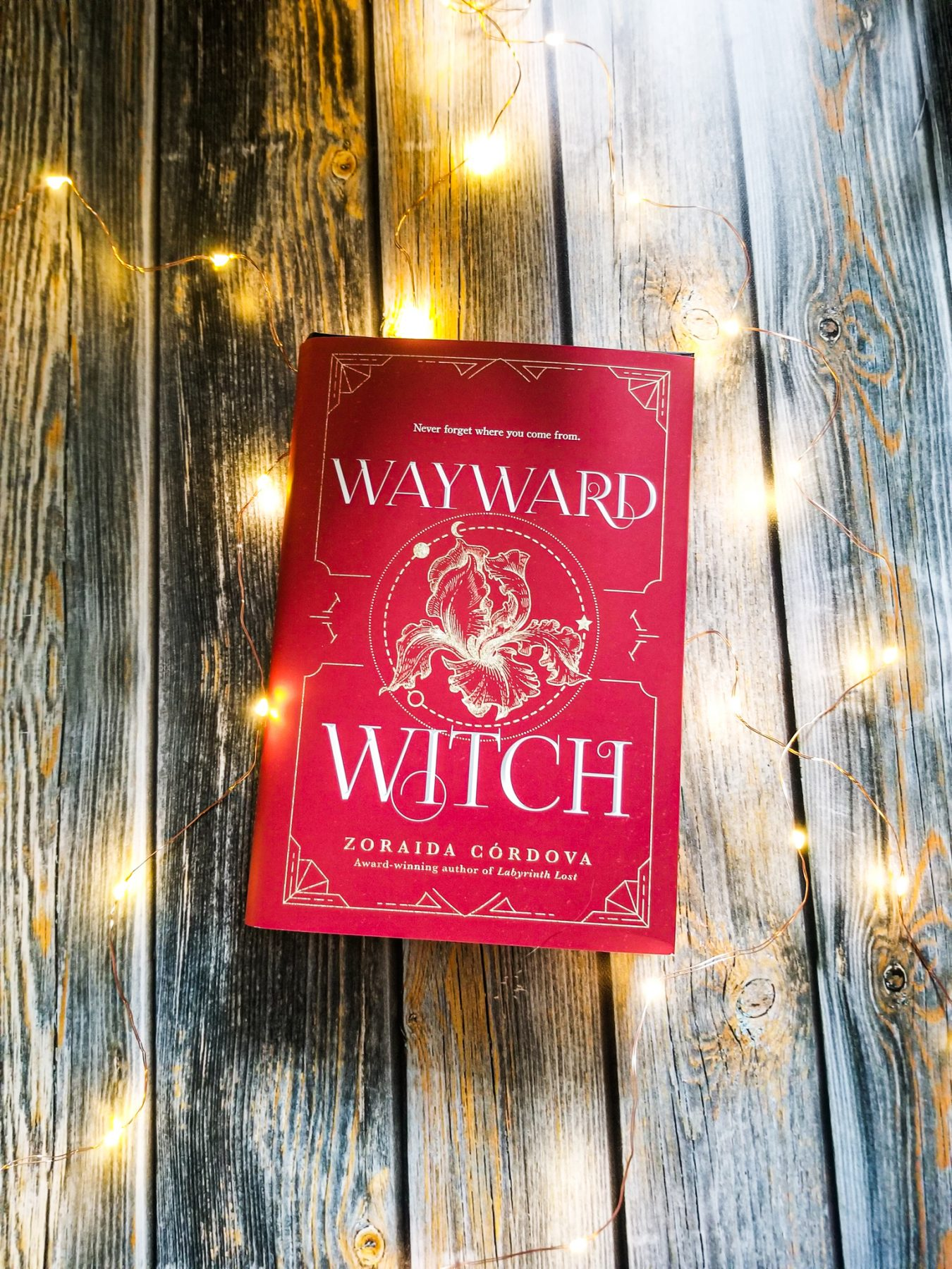 Wayward Witch with fairy lights around it
